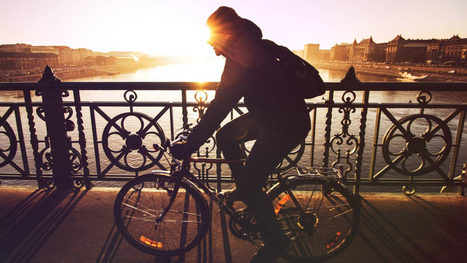 man riding bicycle in silhouette painting
